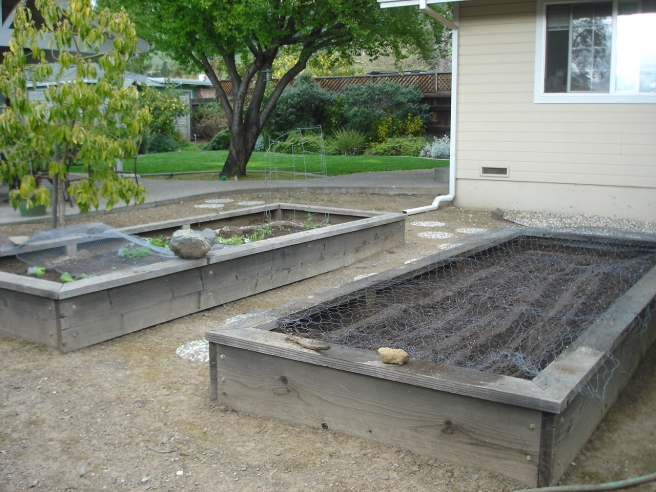 After Planting