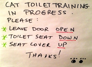 Cat Toilet Training in Progress